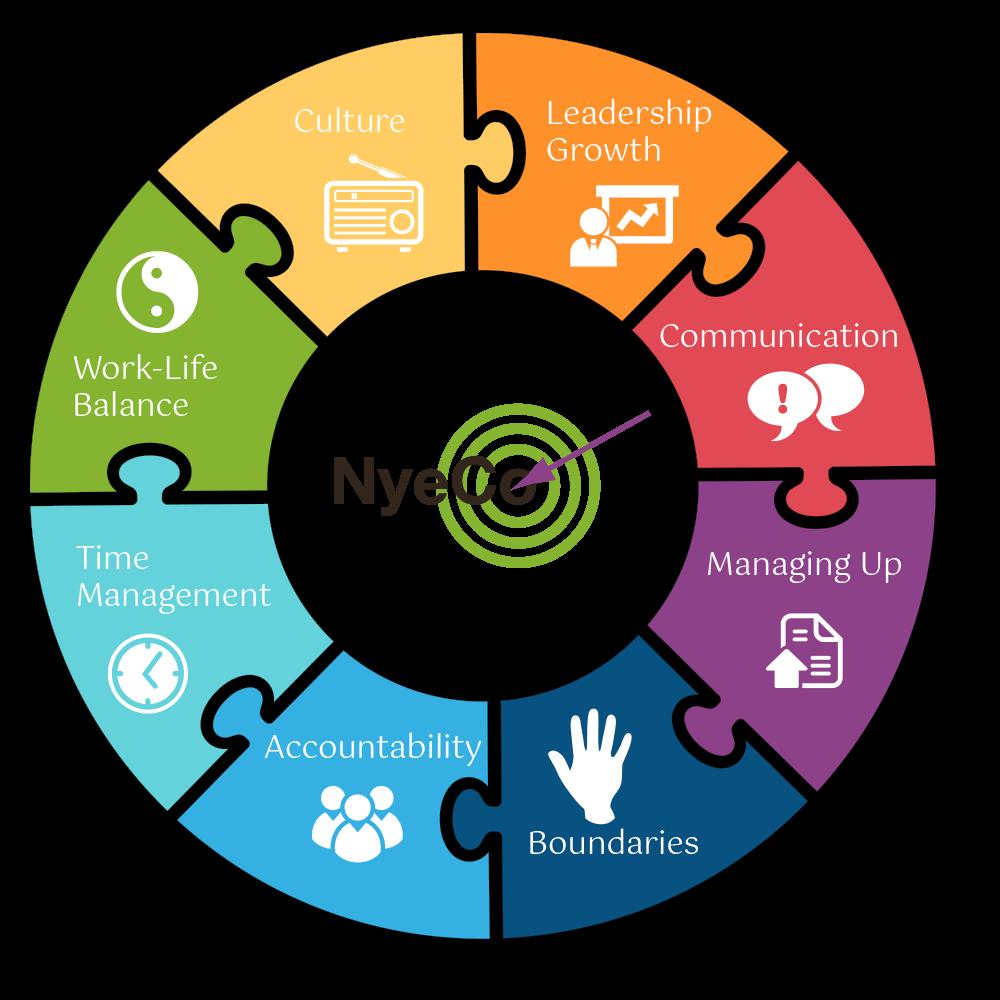 NyeCo Infographic